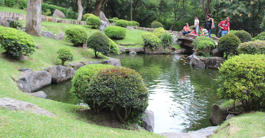 jardin japones - colomo zapopan